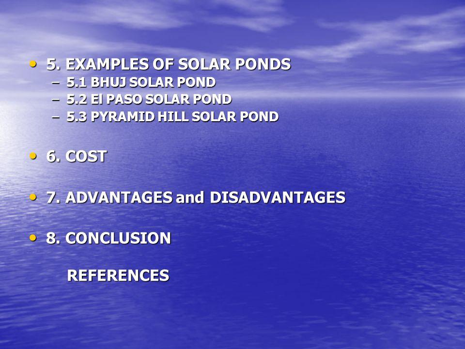 Fig. 5 Closer View of El Paso Solar Pond [10].