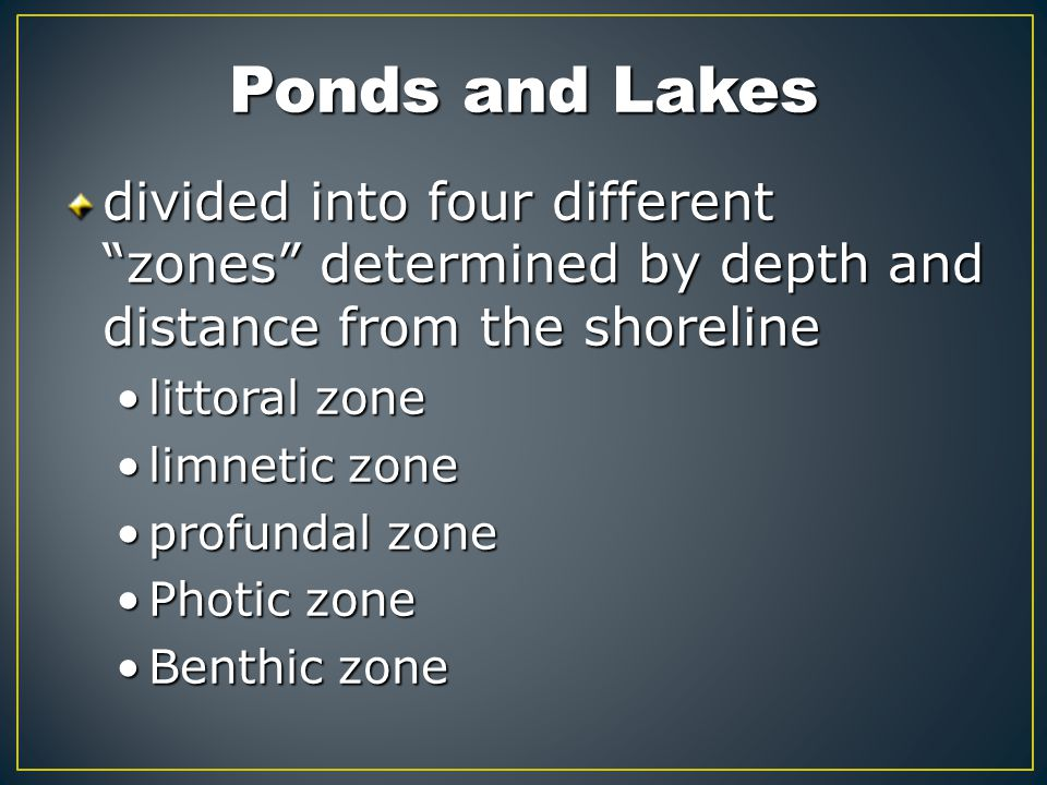 "Ponds and Lakes divided into four different ""zones"" determined by depth and distance from the shoreline littoral zonelittoral zone limnetic zonelimnet"