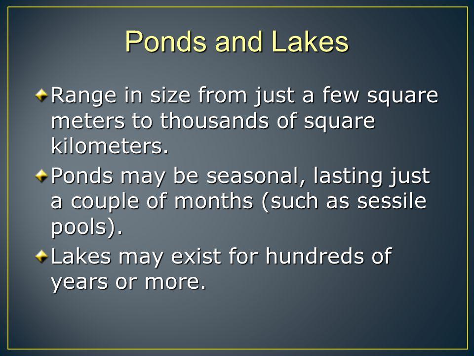 Examples of lakes Taal volcano lake Mitchigan lake Grasmere lake Silver lakeLake lamonia