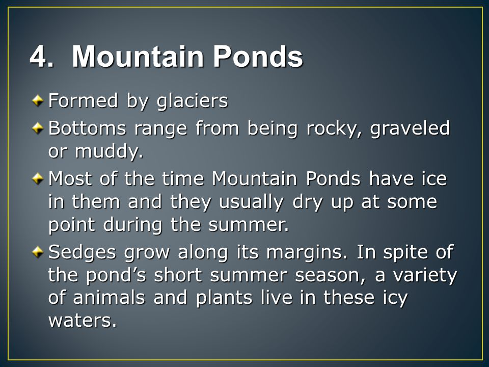 4. Mountain Ponds Formed by glaciers Bottoms range from being rocky, graveled or muddy. Most of the time Mountain Ponds have ice in them and they usua