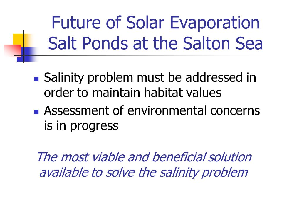 Future of Solar Evaporation Salt Ponds at the Salton Sea Salinity problem must be addressed in order to maintain habitat values Assessment of environm