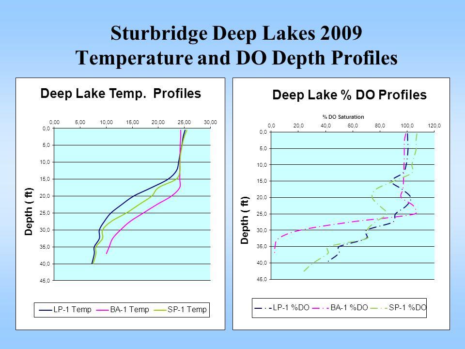 Sturbridge Deep Lakes 2009 Temperature and DO Depth Profiles