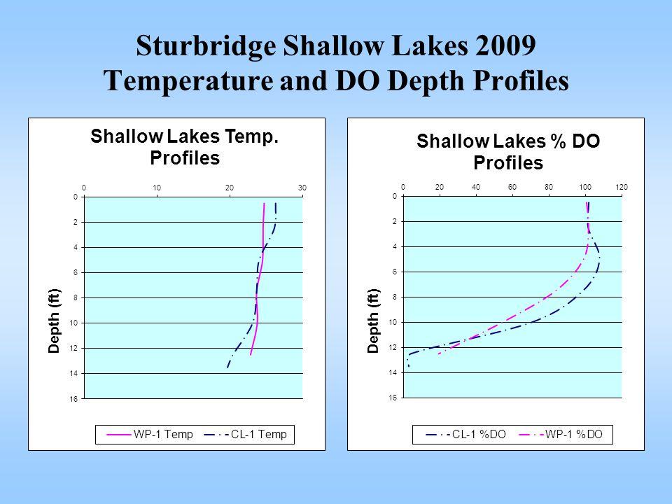 Sturbridge Shallow Lakes 2009 Temperature and DO Depth Profiles