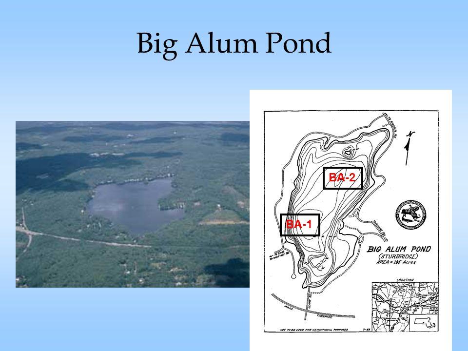 Big Alum Pond BA-2 BA-1