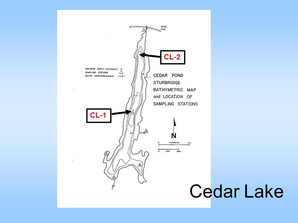 CL-1 CL-2 Cedar Lake