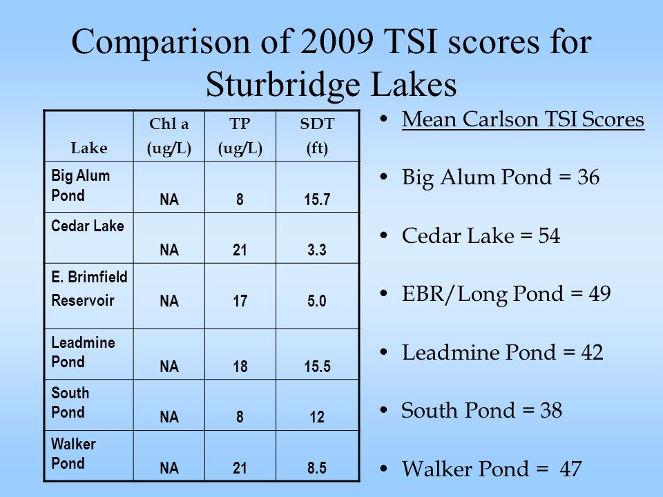 Comparison of 2009 TSI scores for Sturbridge Lakes Mean Carlson TSI Scores Big Alum Pond = 36 Cedar Lake = 54 EBR/Long Pond = 49 Leadmine Pond = 42 South Pond = 38 Walker Pond = 47 Lake Chl a (ug/L) TP (ug/L) SDT (ft) Big Alum Pond NA815.7 Cedar Lake NA213.3 E.