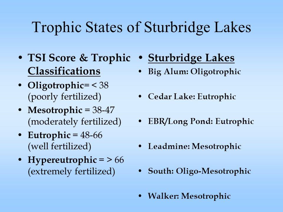 Trophic States of Sturbridge Lakes TSI Score & Trophic Classifications Oligotrophic = < 38 (poorly fertilized) Mesotrophic = 38-47 (moderately fertilized) Eutrophic = 48-66 (well fertilized) Hypereutrophic = > 66 (extremely fertilized) Sturbridge Lakes Big Alum: Oligotrophic Cedar Lake: Eutrophic EBR/Long Pond: Eutrophic Leadmine: Mesotrophic South: Oligo-Mesotrophic Walker: Mesotrophic