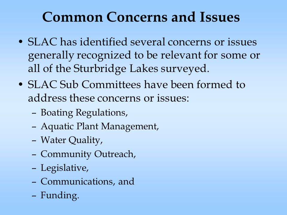 Common Concerns and Issues SLAC has identified several concerns or issues generally recognized to be relevant for some or all of the Sturbridge Lakes surveyed.
