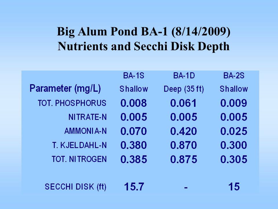 Big Alum Pond BA-1 (8/14/2009) Nutrients and Secchi Disk Depth