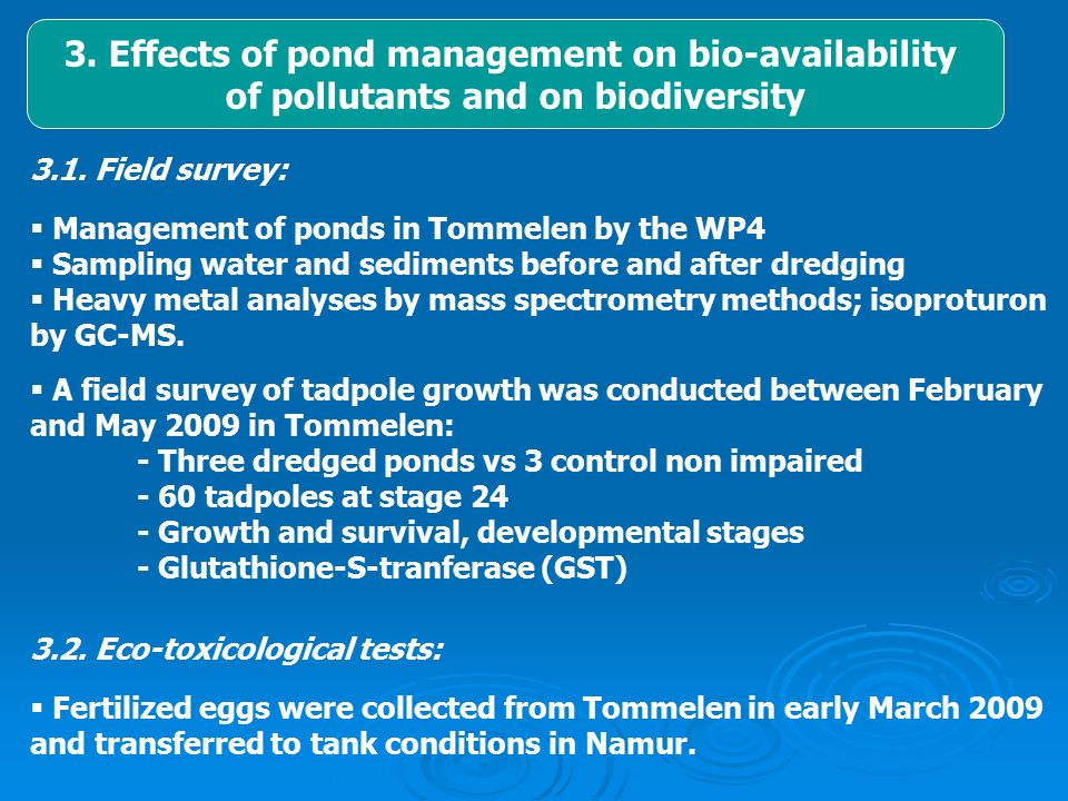  Tadpoles at stage 24 were submitted to isoproturon and cadmium challenge during one month at various concentrations  Experimental design:  ISO = Isoproturon  Cd = cadmium  CT = control  Doses: - Iso 1, 10 and 100 µg/L - Cd 1 and 10 µg /L - IsoCd 1 and 10 µg /L  Variables: - Growth, malformations and developmental stages - Detoxification enzymes (GST) - Stress proteins (ST41)