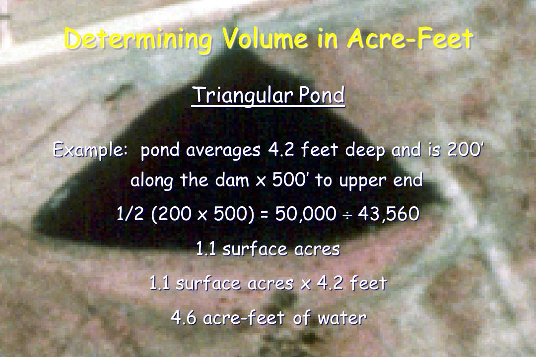 Determining Volume in Acre-Feet Triangular Pond Example: pond averages 4.2 feet deep and is 200' along the dam x 500' to upper end 1/2 (200 x 500) = 50,000  43,560 1.1 surface acres 1.1 surface acres x 4.2 feet 4.6 acre-feet of water