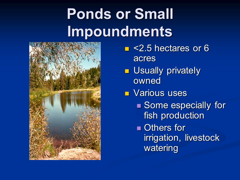 Ponds or Small Impoundments <2.5 hectares or 6 acres Usually privately owned Various uses Some especially for fish production Others for irrigation, livestock watering