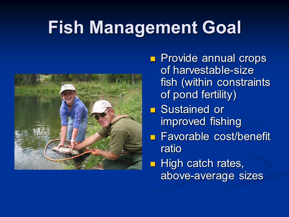 Fish Management Goal Provide annual crops of harvestable-size fish (within constraints of pond fertility) Sustained or improved fishing Favorable cost