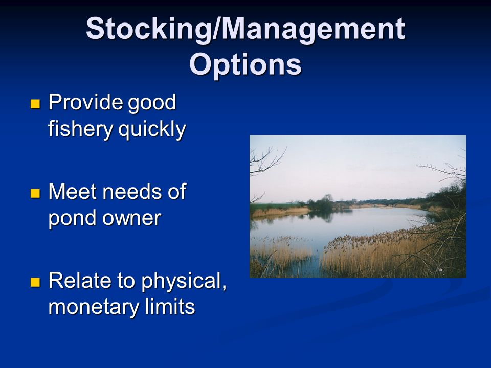 Stocking/Management Options Provide good fishery quickly Provide good fishery quickly Meet needs of pond owner Meet needs of pond owner Relate to phys