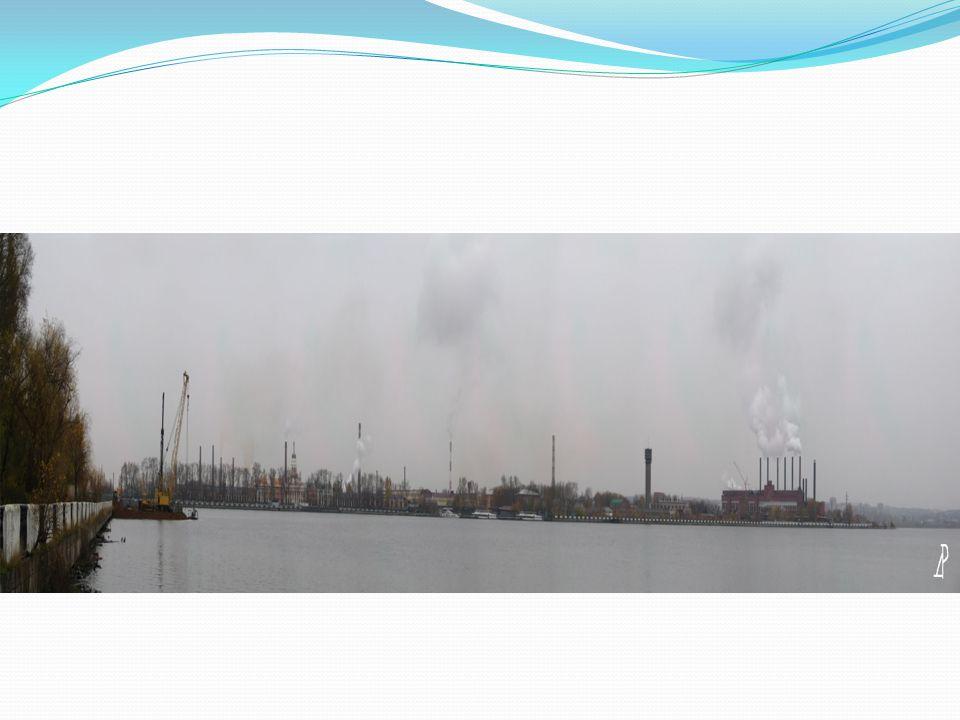 Zakolyukin Pavel Tebenkov Mikhail The project «Development of the method «Development of the method of water purification of Izhevsky pond» of water purification of Izhevsky pond»