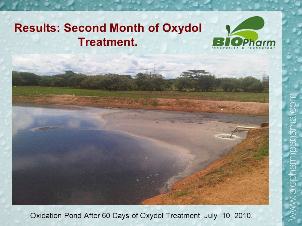 Results: Second Month of Oxydol Treatment. Oxidation Pond After 60 Days of Oxydol Treatment. July 10, 2010.