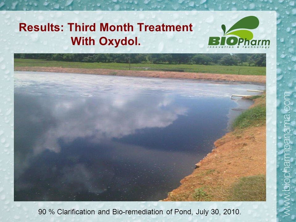 Results: Third Month Treatment With Oxydol. 90 % Clarification and Bio-remediation of Pond, July 30, 2010.