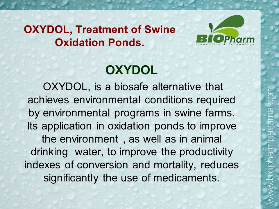 Results: Third Month Treatment With Oxydol.Clarification and Bio-remediation of Pond.