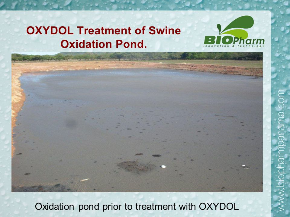 Results of Second Month of Oxydol Treatment.