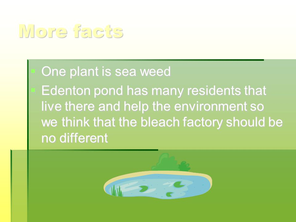 More facts  One plant is sea weed  Edenton pond has many residents that live there and help the environment so we think that the bleach factory should be no different