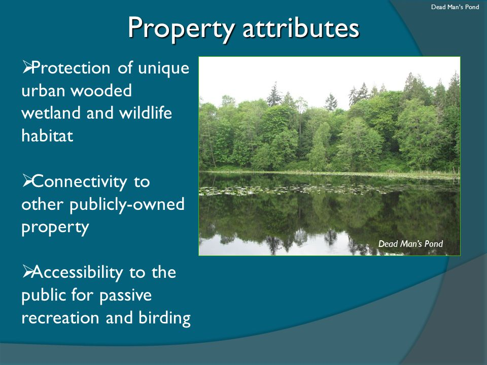 Property attributes  Protection of unique urban wooded wetland and wildlife habitat  Connectivity to other publicly-owned property  Accessibility t