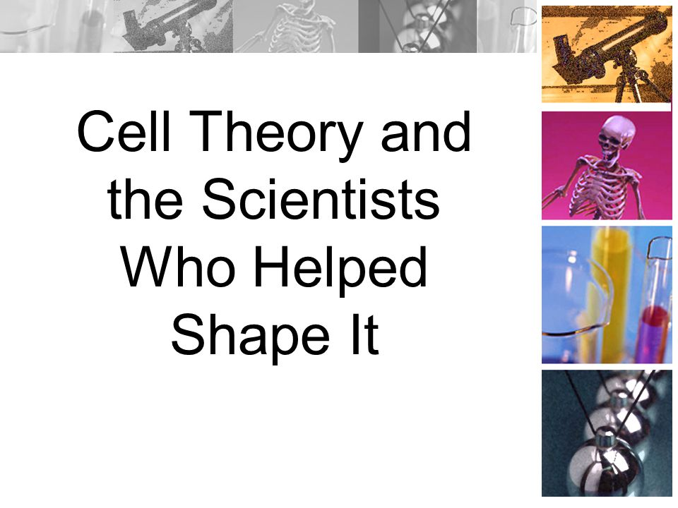 Cell Theory and the Scientists Who Helped Shape It
