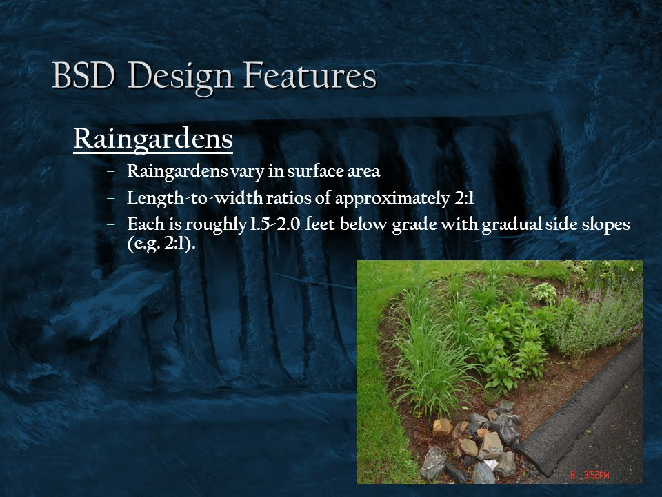 BSD Design Features Raingardens – Raingardens vary in surface area – Length-to-width ratios of approximately 2:1 – Each is roughly 1.5-2.0 feet below