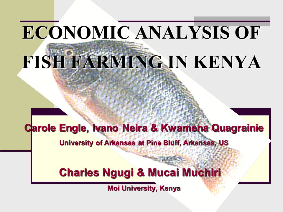Background Continued PD/A CRSP research with improved production technology Continued PD/A CRSP research with improved production technology Limited expansion in fish production Limited expansion in fish production Expansions limited by financial resources Expansions limited by financial resources Need for better understanding of farm economic & financial performance Need for better understanding of farm economic & financial performance Need for farm data & information to estimate economic and financial indicators Need for farm data & information to estimate economic and financial indicators