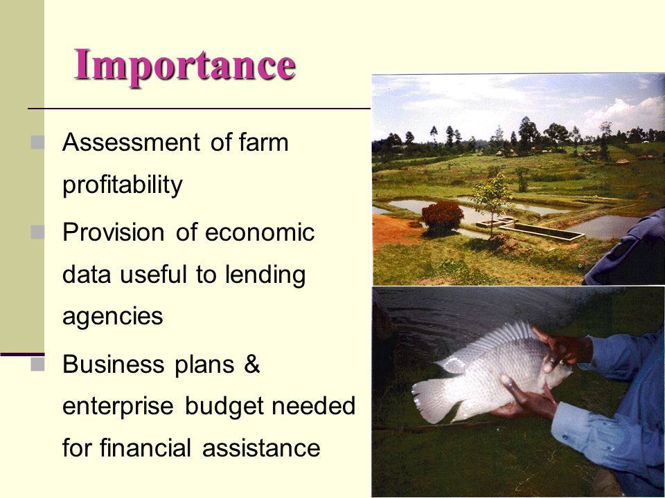 Objective To collect and organize economic information necessary for preparing enterprise budgets and business plans for fish farms