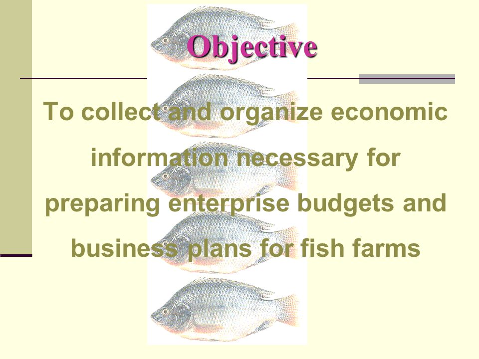 Pond Records: Production & Yield  Stocking  Date  Size  Weight  Fingerling quantity  Fingerling sources