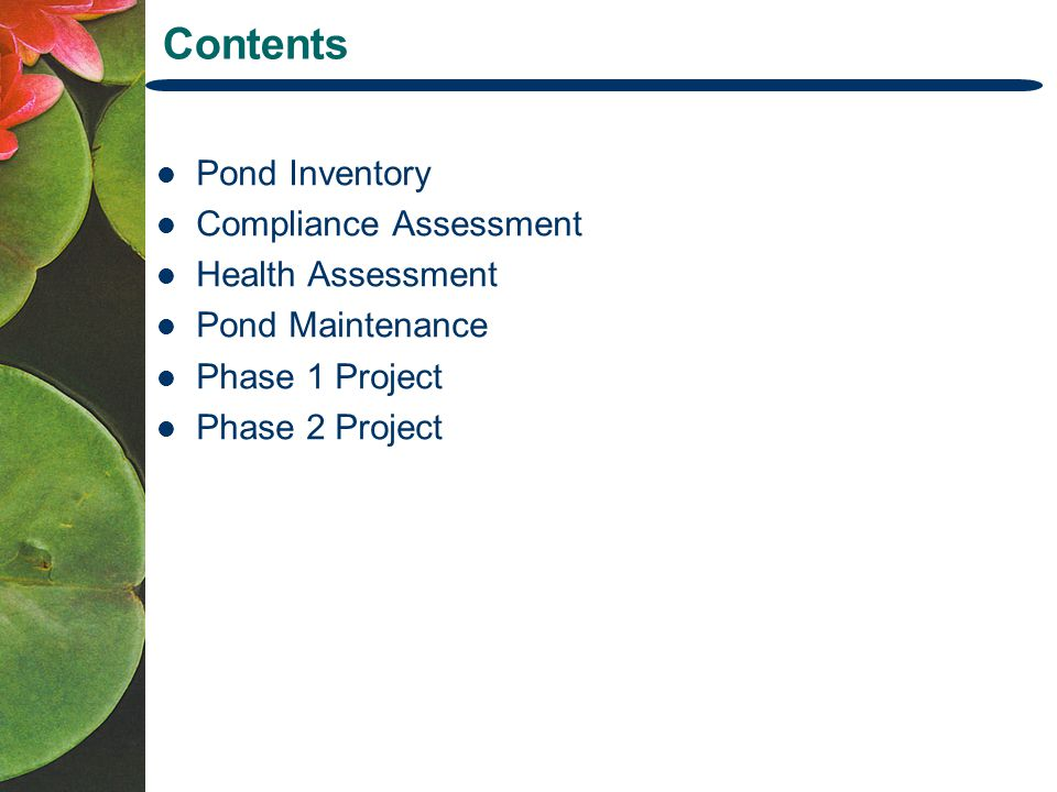 Contents Pond Inventory Compliance Assessment Health Assessment Pond Maintenance Phase 1 Project Phase 2 Project