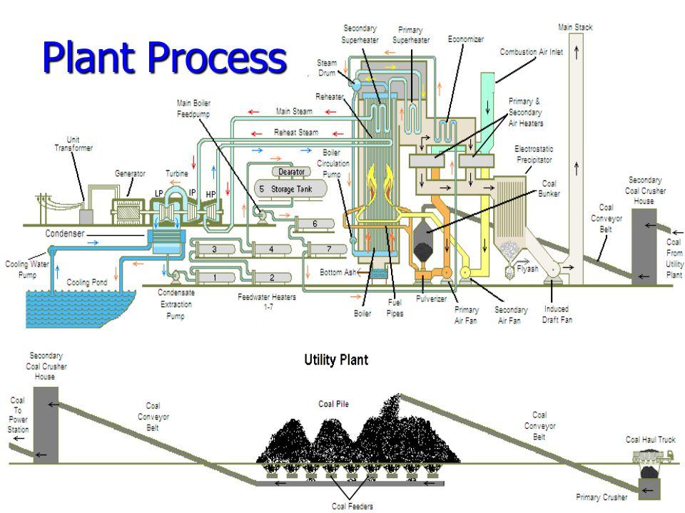 Plant Process