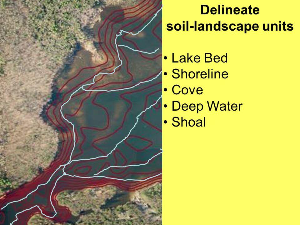 Delineate soil-landscape units Lake Bed Shoreline Cove Deep Water Shoal