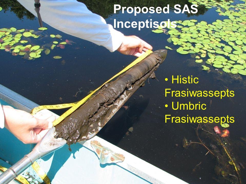 Histic Frasiwassepts Umbric Frasiwassepts Proposed SAS Inceptisols