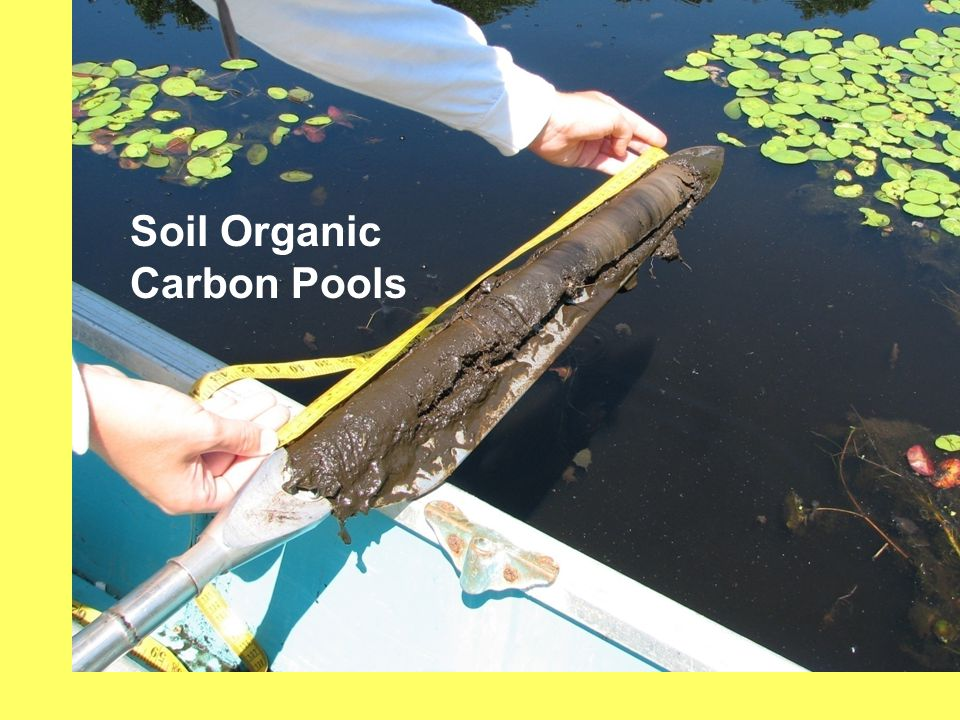 Soil Organic Carbon Pools