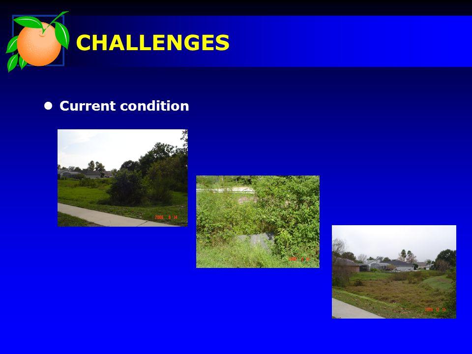 CHALLENGES l Current condition