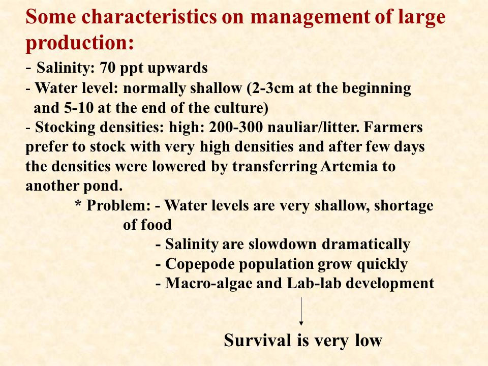 Some characteristics on management of large production: - Salinity: 70 ppt upwards - Water level: normally shallow (2-3cm at the beginning and 5-10 at