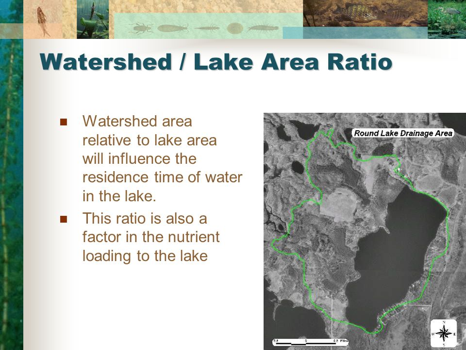 Watershed / Lake Area Ratio Watershed area relative to lake area will influence the residence time of water in the lake.