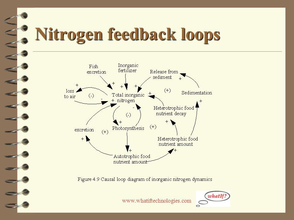 www.whatiftechnologies.com Nitrogen feedback loops