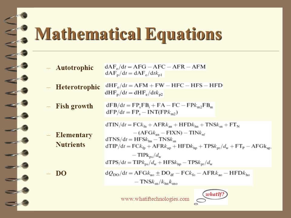 www.whatiftechnologies.com Mathematical Equations –Autotrophic –Heterotrophic –Fish growth –Elementary Nutrients –DO