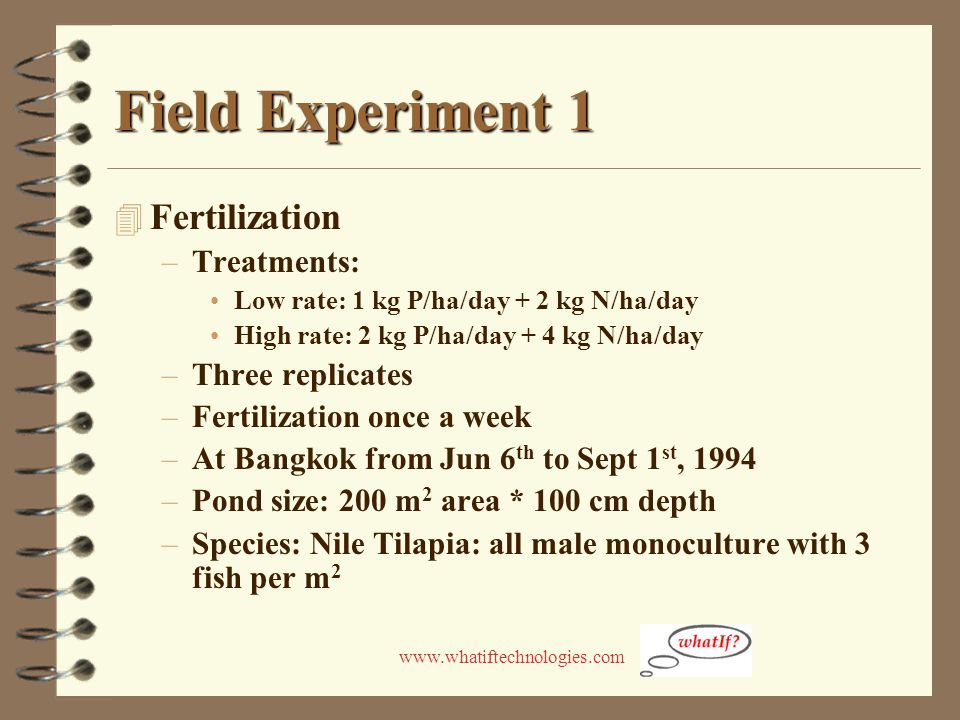 www.whatiftechnologies.com Field Experiment 1 4 Fertilization –Treatments: Low rate: 1 kg P/ha/day + 2 kg N/ha/day High rate: 2 kg P/ha/day + 4 kg N/h