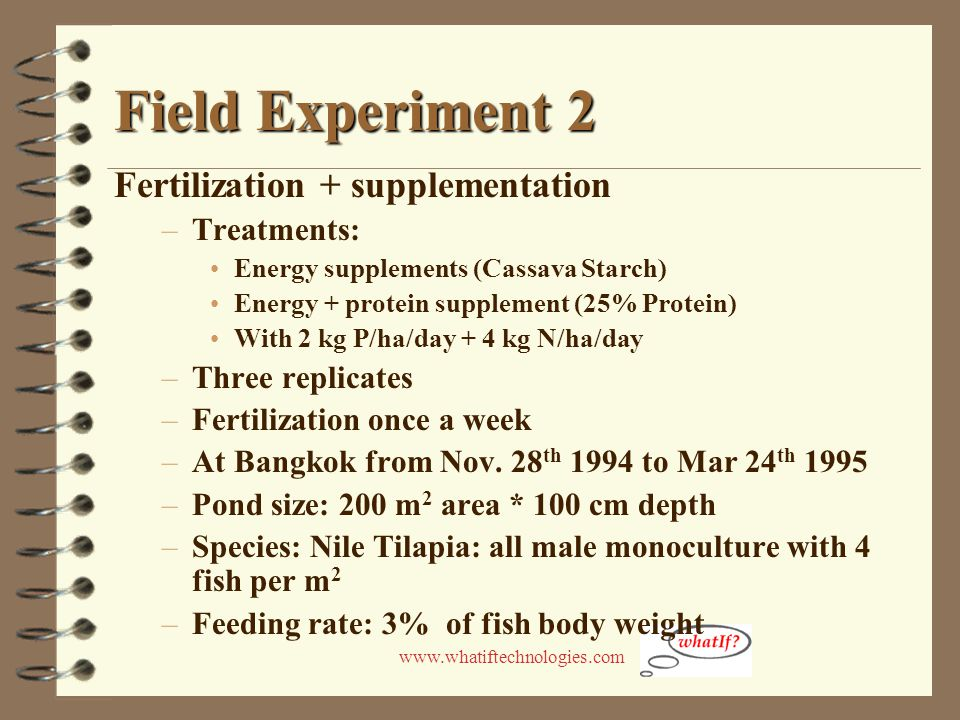 www.whatiftechnologies.com Field Experiment 2 Fertilization + supplementation –Treatments: Energy supplements (Cassava Starch) Energy + protein supple