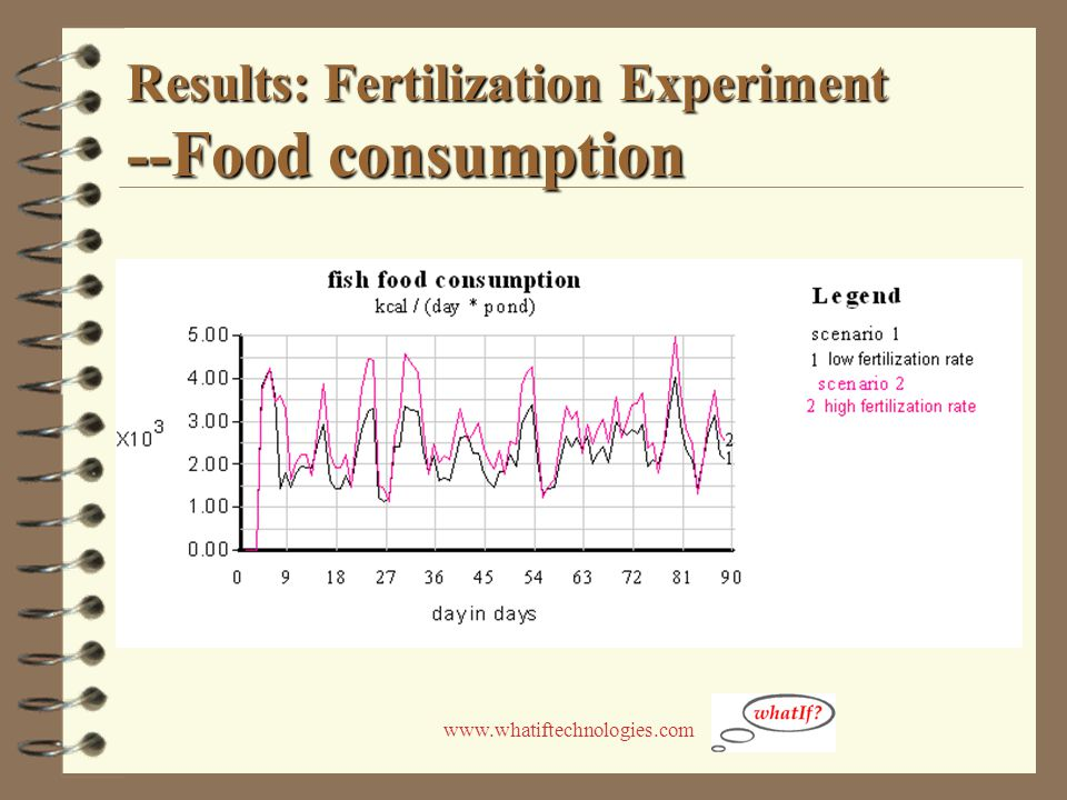 www.whatiftechnologies.com Results: Fertilization Experiment --Food consumption