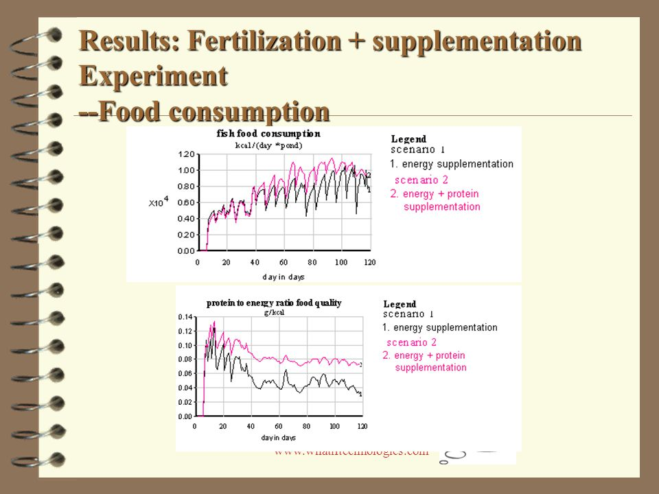 www.whatiftechnologies.com Results: Fertilization + supplementation Experiment --Food consumption