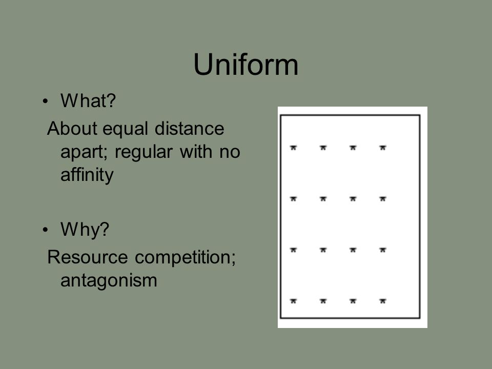 Uniform What? About equal distance apart; regular with no affinity Why? Resource competition; antagonism