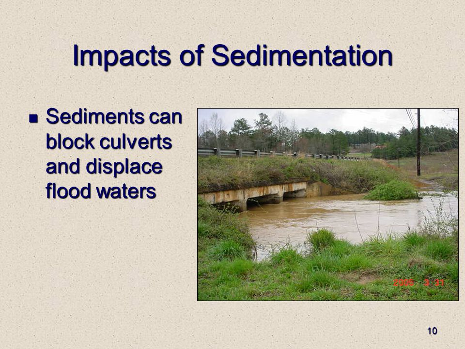 10 Impacts of Sedimentation Sediments can block culverts and displace flood waters Sediments can block culverts and displace flood waters