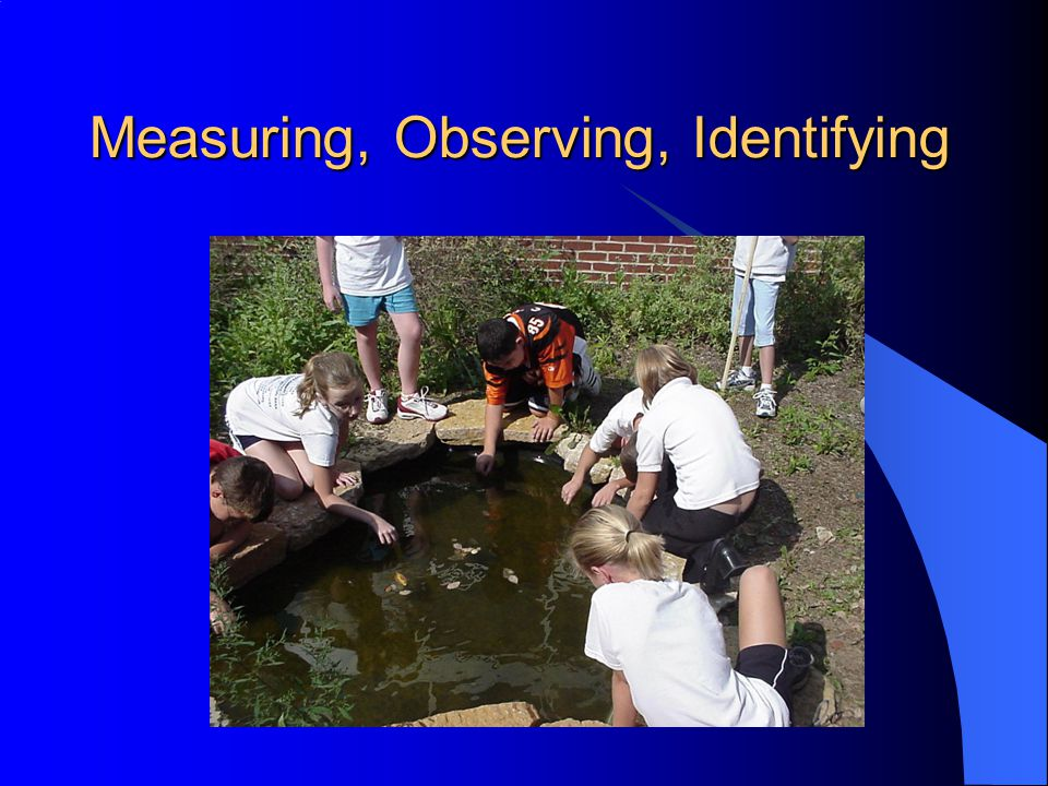 Measuring, Observing, Identifying