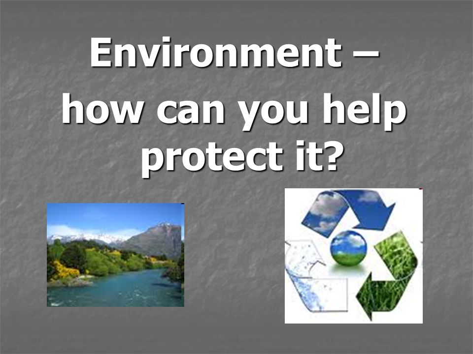 Environment – how can you help protect it?