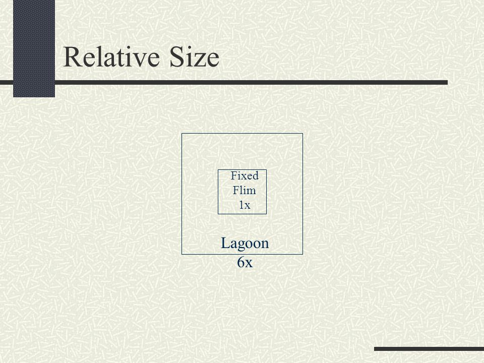 Relative Size Fixed Flim 1x Lagoon 6x