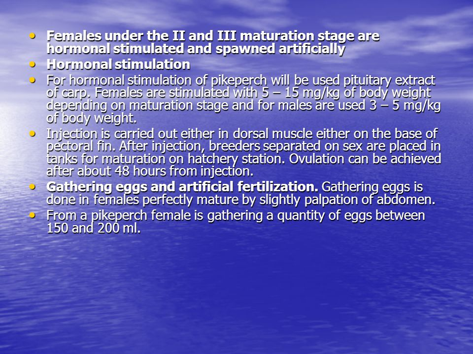 Females under the II and III maturation stage are hormonal stimulated and spawned artificially Females under the II and III maturation stage are hormonal stimulated and spawned artificially Hormonal stimulation Hormonal stimulation For hormonal stimulation of pikeperch will be used pituitary extract of carp.